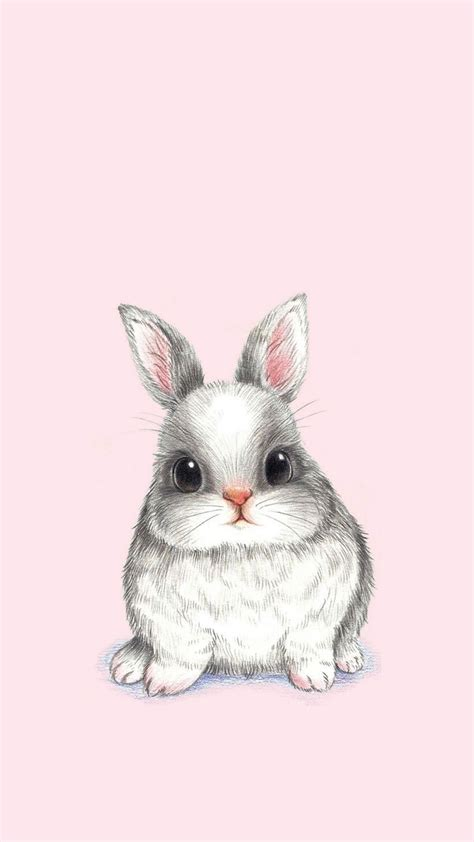 bunny rabbit phone wallpaper rabbit conejo lapin kani