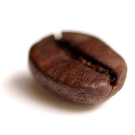 Coffee Bean file coffee bean transparent png