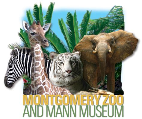 montgomery zoo lights faith family and friends food friends and