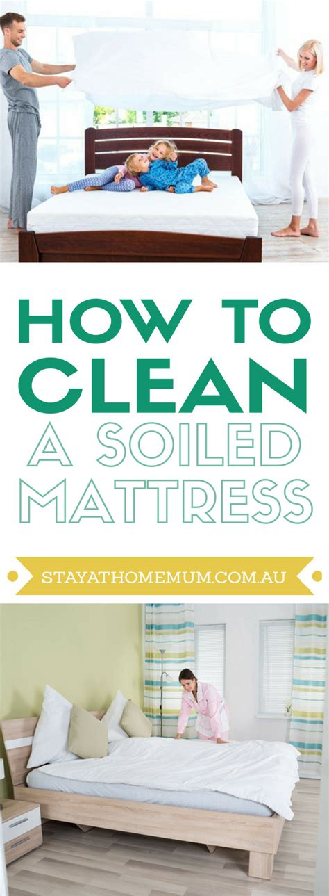 Get Wee Out Of Mattress by How To Clean A Soiled Mattress