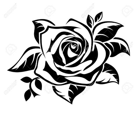 rose tattoo template cliparts stock vector and royalty free