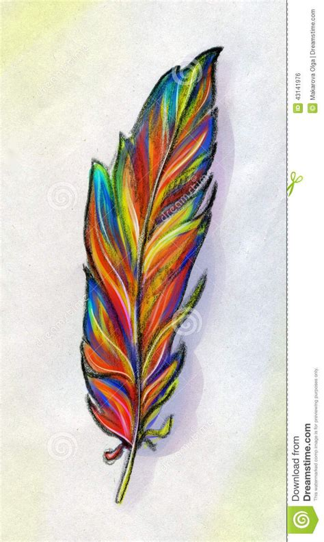 colored feather tattoo pictures of colored sketch of a the