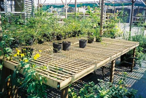 green house benches wood greenhouse benches woodworking tools for children