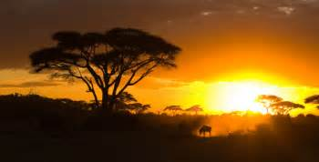 Protect africa natural preservation the nature conservancy