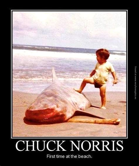 Funny Beach Memes - chuck norris funny quotes quotesgram