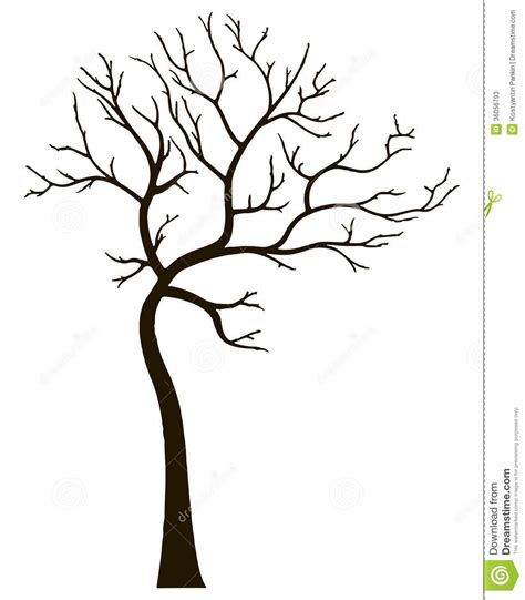 tree template without leaves decorative tree without leaves stock photos image 36056793