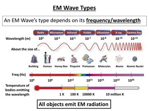 What Type Of Wave Is A Light Wave by Ppt 14 1 Characteristics Of Light Powerpoint Presentation Id 2121001