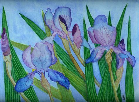 il fiore iris acquarello il piacere di sperimentare