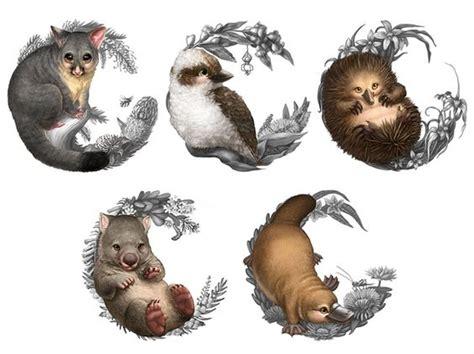 animal tattoo perth watermark s elise martinson baby australian animal