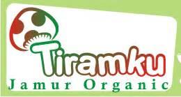 Bibit Jamur Tiram Jombang budidaya jamur tiram jual baglog jual bibit budidaya