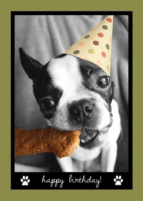 amelia  happy birthday  storenvy