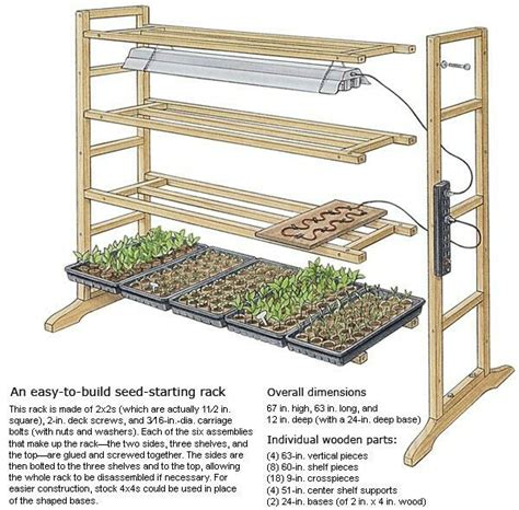starting seeds indoors lights best 25 seed starting ideas on grow lights