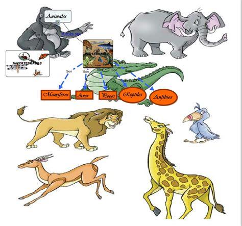 imagenes de animales vertebrados mamiferos ejemplo1 animales vertebrados