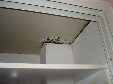 chambre standard picture of melia cayo coco cayo coco