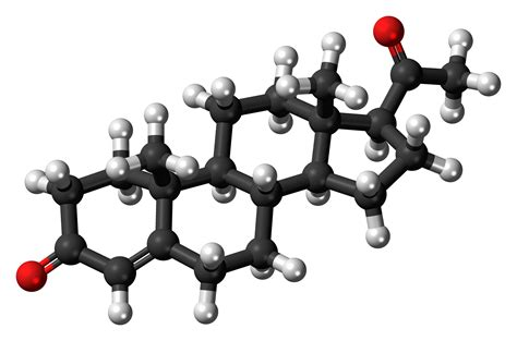 progesterone wikiwand