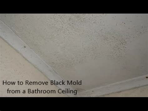 how to remove black mold from a bathroom ceiling youtube