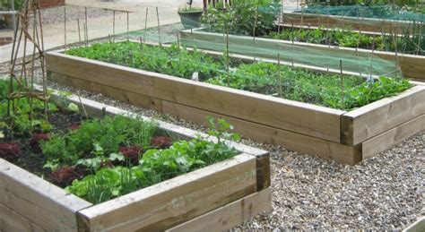 Raised Beds: Starting To Grow Your Own Vegetables   LTG