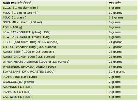 protein food list protein rich food high protein rich foods protein rich