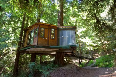 santa cruz tree house redwood treehouse woodz