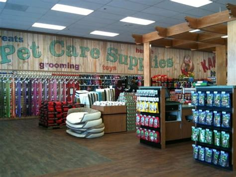 puppy stores in florida kahoots pet store 25 photos pet stores huntington ca reviews yelp