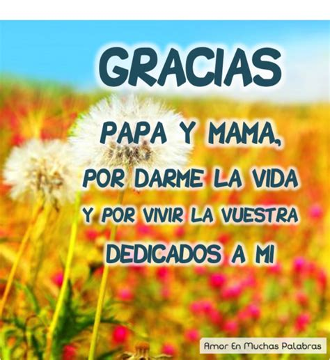 palabras de agradecimiento a los padres de familia gratis palabras sinceras para agradecer a tus padres 161 gracias pap 225 s