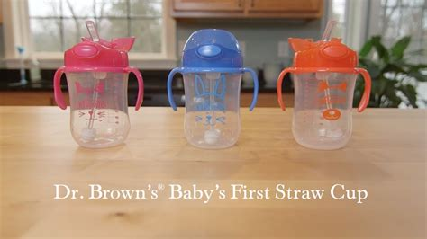 Dr Brown S Companion Cup Stage 2 12 Bulan Keatas straw cup dr brown s baby s straw cup