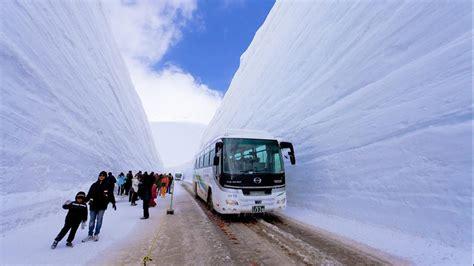 Melihat Salju Musim Semi Jepang, Di Tateyama Kurobe Alpine