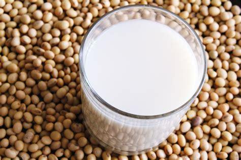 come cucinare i semi di soia tofu cos 232 e come si produce