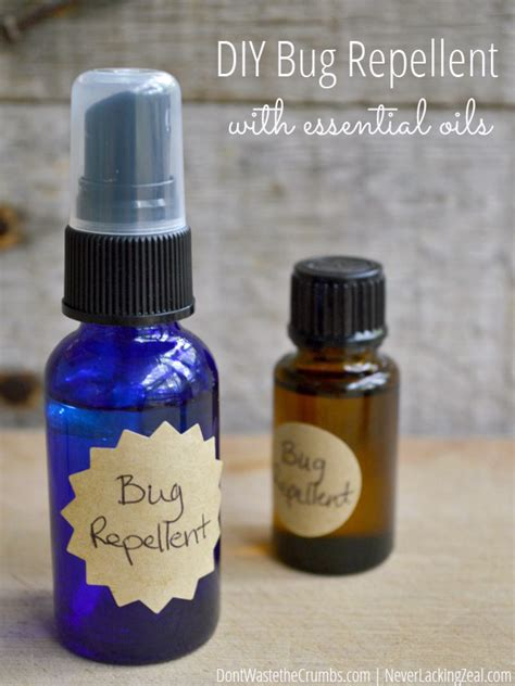 diy insect spray picture of diy bug spray purposed at various types of insects