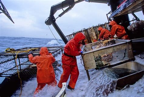 fishing jobs in alaska on a boat 9 of the world s most extreme jobs