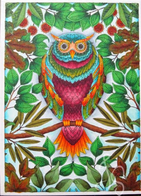 the secret garden colouring book for adults waterstones 94 best images about owl secret garden coruja jardim