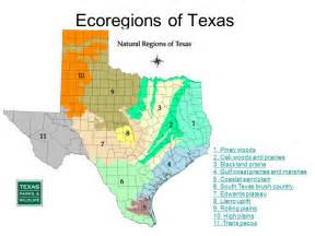 texas ecoregions map ecoregions of texas notes thinglink