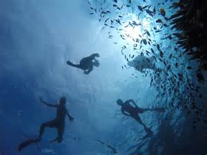 Sapu Lidi Hello wonderful menjangan island asepchik