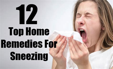 12 top home remedies for sneezing search herbal home