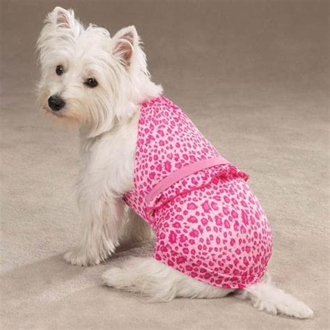 puppy bathing suits bathing suits and bikinis