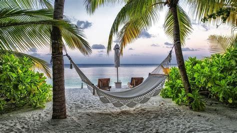 hammock   sandy beach wallpaper beach wallpapers
