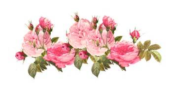 Tulip Wall Stickers image 4851255e0188e91462a811d5bdbfaeb1 vintage pink