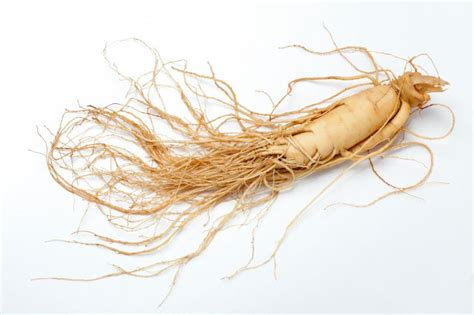 Ginseng Amerika ginseng benefits and side effects the luxury spot