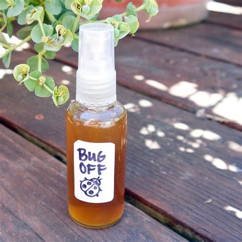 natural mosquito repellents homemade natural bug repellent recipes going evergreen