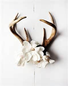 deer antler decorating ideas 18 creative ways to decorate with antlers