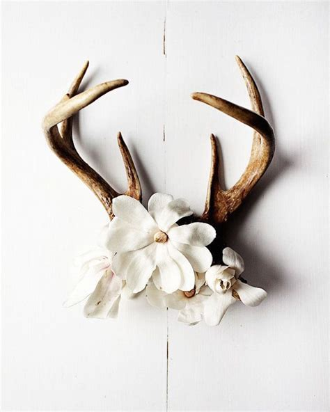 Deer Antler Wall Decor by 18 Creative Ways To Decorate With Antlers