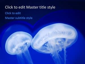 Free Jellyfish Ppt Template Marine Biology Powerpoint