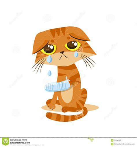 sad crying cat cartoon vector illustration splinting leg