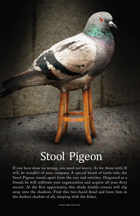 Stool Piegon by Black On Black