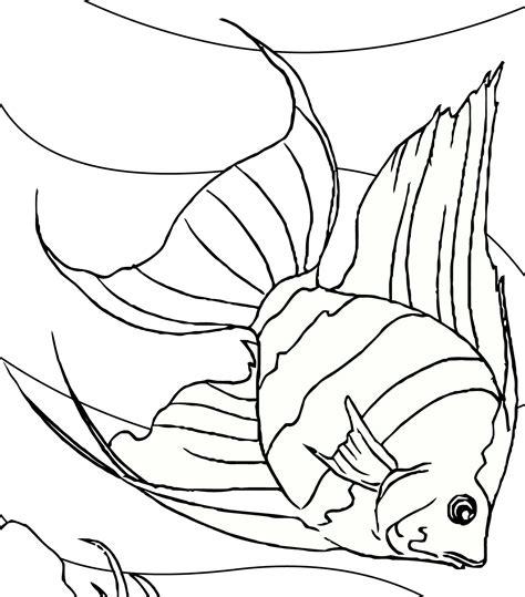 gambar mewarnai hitam putih ikan hias air tawar  anak