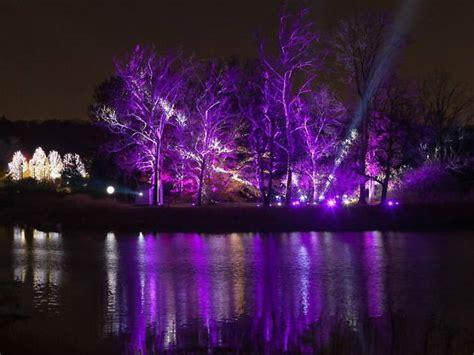 morton arboretum lights morton arboretum lights morton arboretum