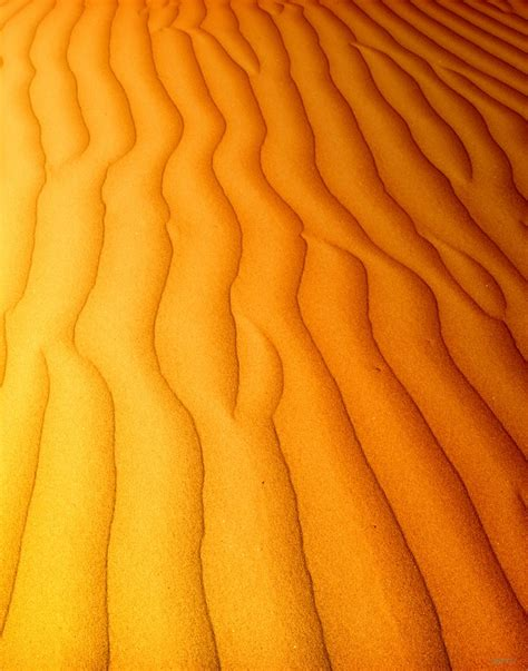 Backdrop Ultah Uk 1x1 M cool vinyl 1x1 5m thin outdoors photography background desert theme free shipping photo studio