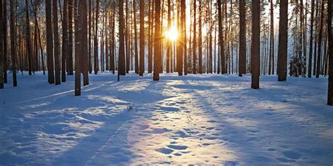 imagenes de invierno y otoño buenos d 237 as se 241 or sol ka volta