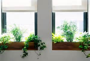 Window Sill Box The Sill Terrain Planting A Window Box The At