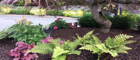 wood chip backyard backyard ideas for using natural texas tree mulch